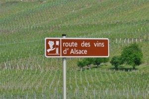 route-vin-alsace